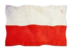 Polskie czcionki stron internetowa WordPress